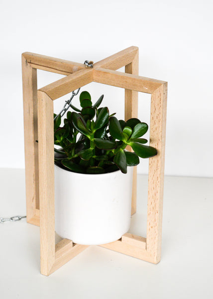 Scandi Beech Hanger with Pot by Ivyline
