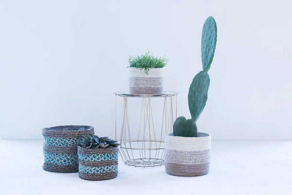 Set of 3 Seagrass Lined Planters by Ivyline