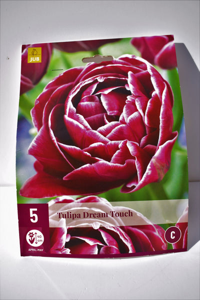 Tulip Dream Touch bulbs