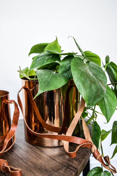Copper Hanging Planter Leather Straps