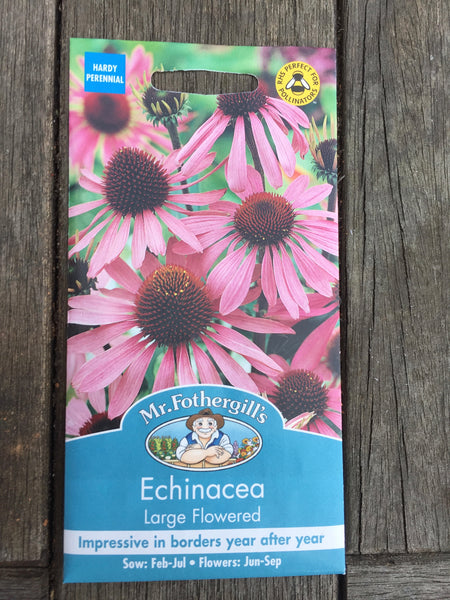 Echinacea Large Flowered Seed by Mr Fothergill's