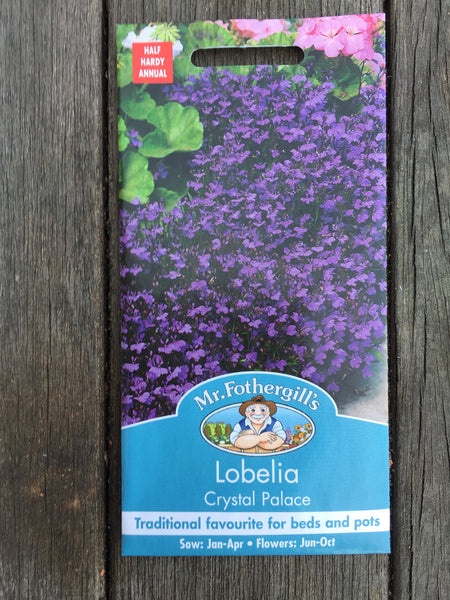 Lobelia Crystal Palace Seeds by Mr Fothergill's