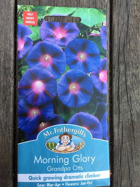 Morning Glory Grandpa Otts Seeds by Mr Fothergill's
