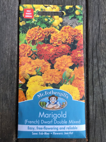 Marigold (French) Dwarf Double Mixed Seeds by Mr Fothergill's