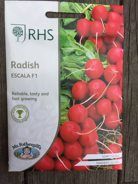 RHS Radish Escala F1 seeds