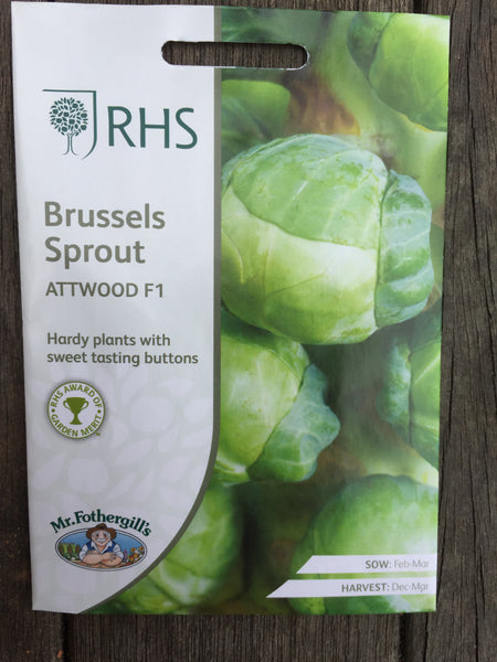 RHS Brussels Sprout Attwood F1 seeds