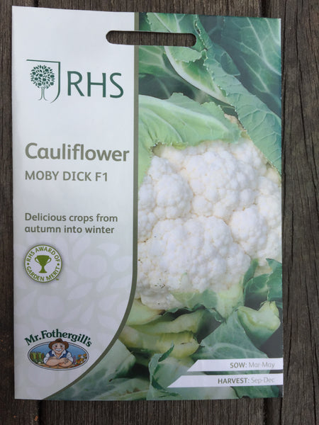 RHS Cauliflower Moby Dick F1 seeds