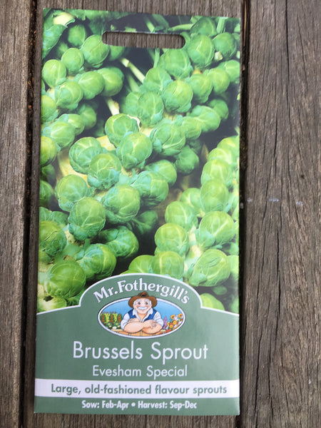 Brussels Sprout Evesham Special seeds Mr Fothergill's