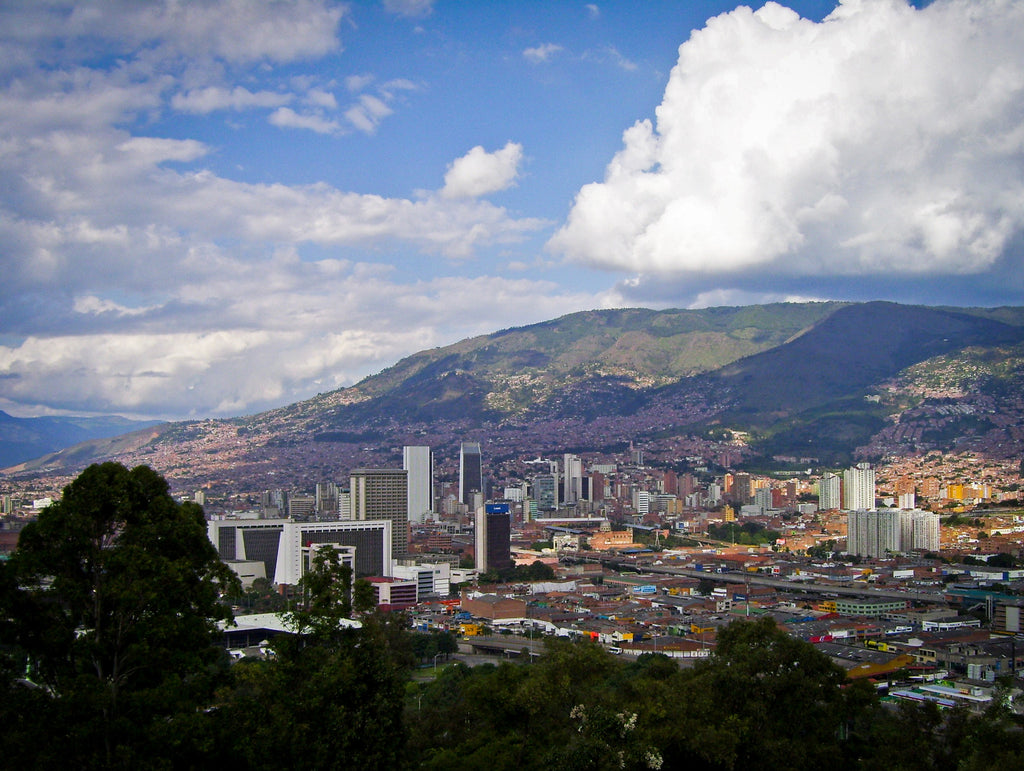 Medellín: from winter back to eternal spring.