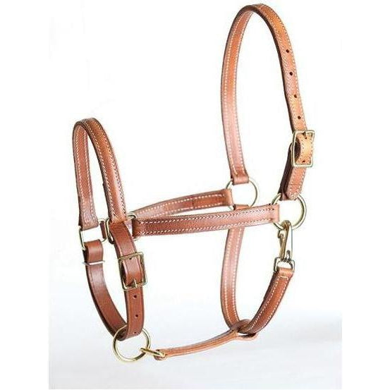 Perri's Leather Value Leather Work Halter - West 20 Saddle Co.