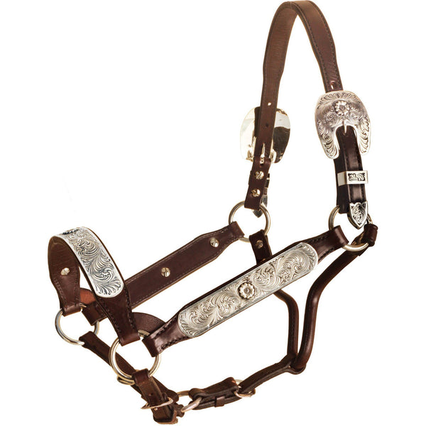 Tory Leather Carson City Congress Halter