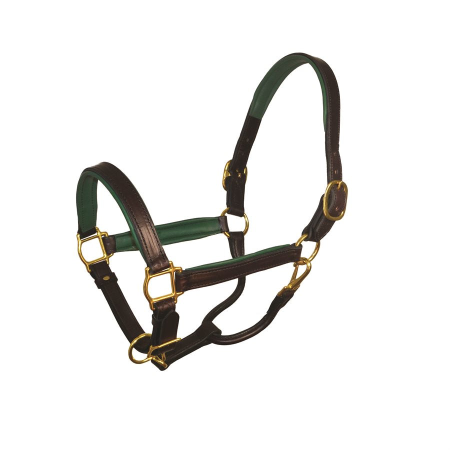 Perri's Leather Padded Leather Halter