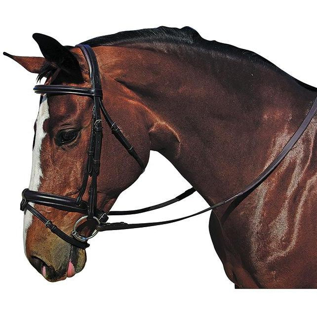 M. Toulouse Plain Raised Eventing Bridle