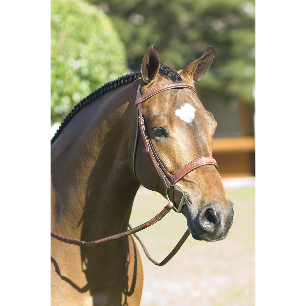 Rodrigo Pessoa Fancy Wide Show Bridle With Raised Laced Reins - West 20 Saddle Co.