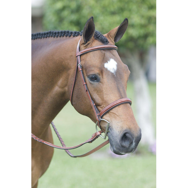 Rodrigo Pessoa Fancy Stitched Padded Wide Noseband Show Bridle - West 20 Saddle Co.