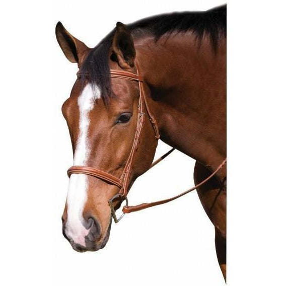 Henri de Rivel Horse Fancy Raised Padded Bridle With Laced Reins - West 20 Saddle Co.