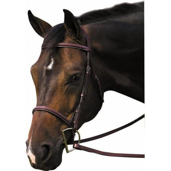 Henri de Rivel Pro Plain Raised Bridle With Laced Reins - West 20 Saddle Co.