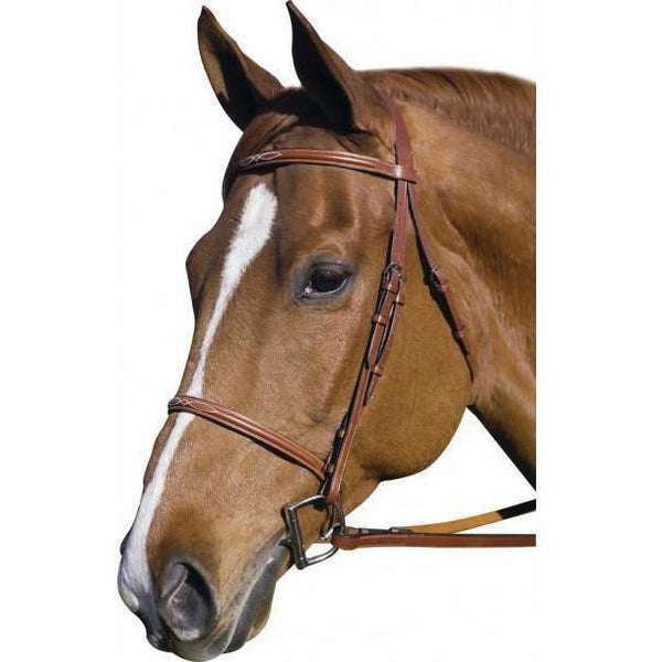 Henri de Rivel Pro Fancy Raised Bridle With Laced Reins - West 20 Saddle Co.