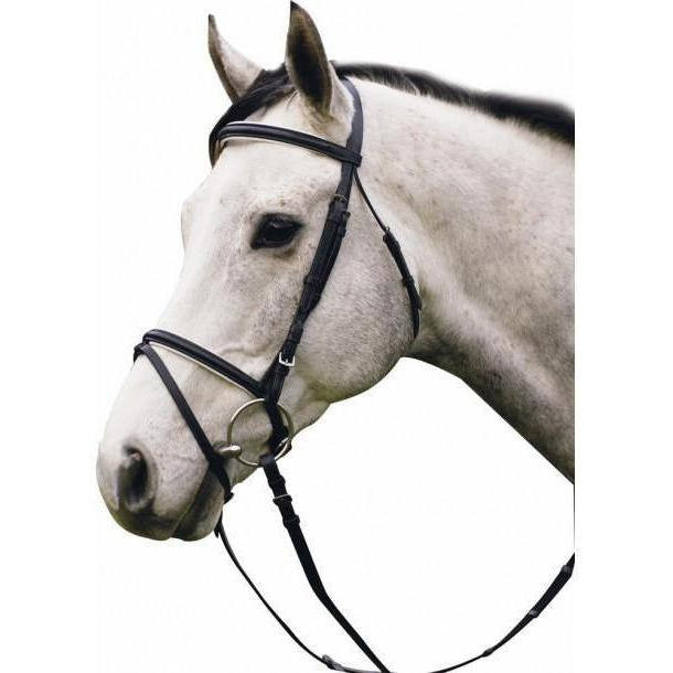 Henri de Rivel Padded Dressage Bridle With Flash And Web Reins - West 20 Saddle Co.