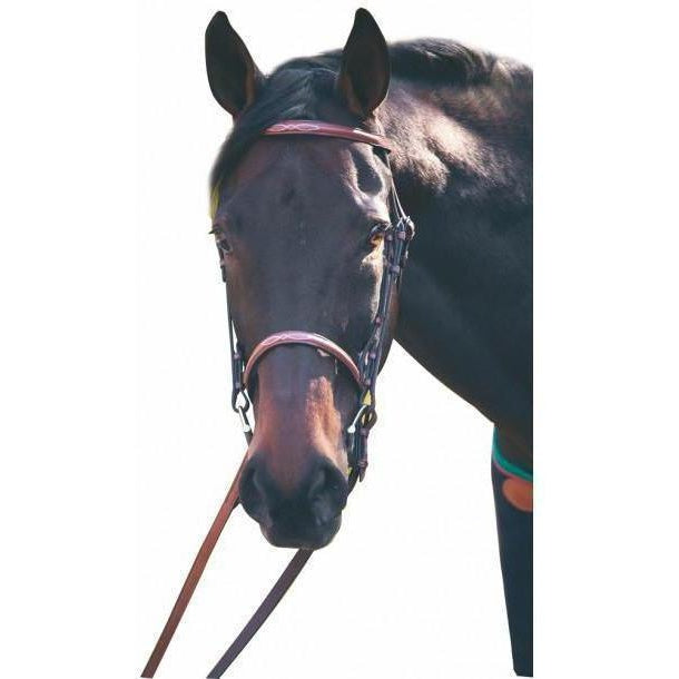 Henri de Rivel Advantage Fancy Raised Snaffle Bridle With Laced Reins - West 20 Saddle Co.