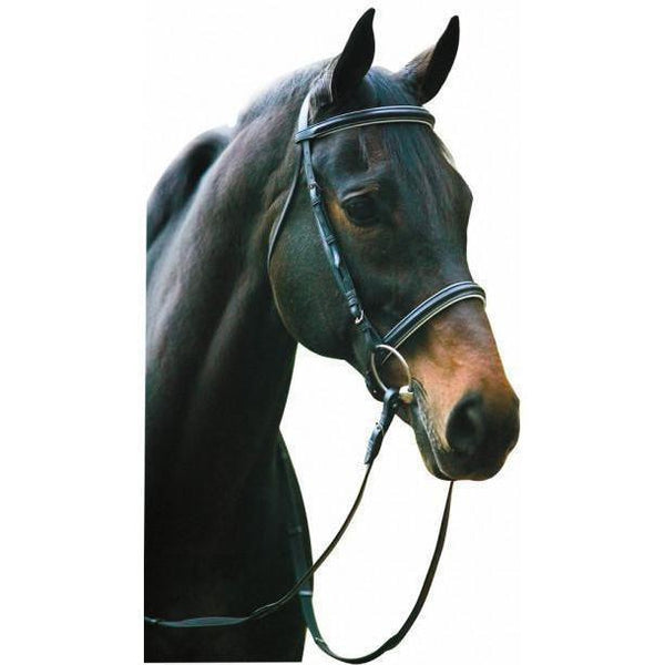 Henri de Rivel Dressage Bridle With Web Reins - West 20 Saddle Co.