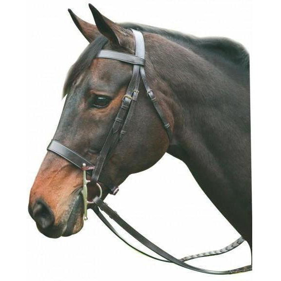 Henri de Rivel Pro Hunt Bridle - West 20 Saddle Co.