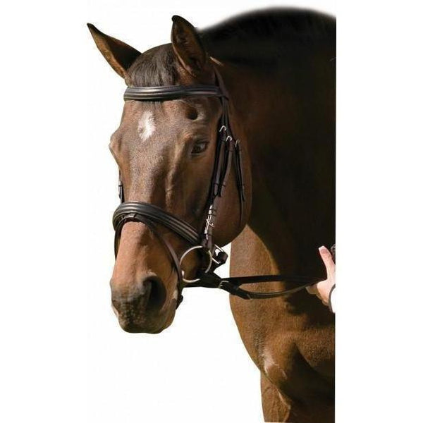 Henri de Rivel Padded Raised Dressage Bridle With Jawband Crank And Flash With Web Reins - West 20 Saddle Co.
