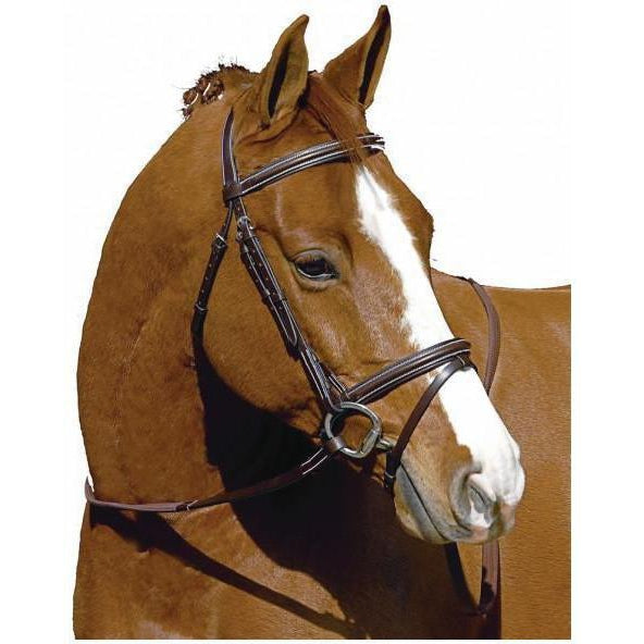 Henri de Rivel Monocrown Event Bridle - West 20 Saddle Co.