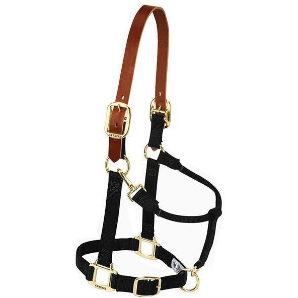 Weaver Leather Small Breakaway Original Adjustable Chin and Throat Snap Halter - West 20 Saddle Co.