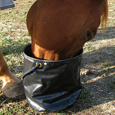 Cashel Collapsible Water Pail - West 20 Saddle Co.