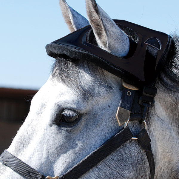 Cashel Horse Helmet - West 20 Saddle Co.