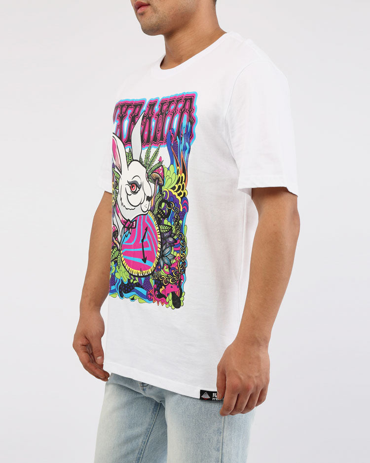 BIG AND TALL HARE TEE-COLOR: WHITE