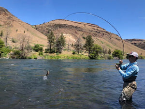 Reading Water and Finding Trout in Rivers
