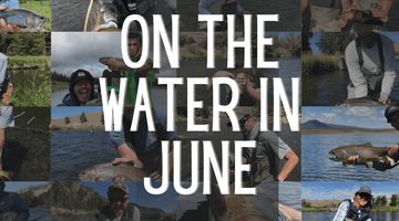 On the Water in June! A Photo Essay