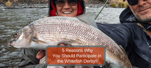 5 Reasons You Should Participate in the Whitefish Derby