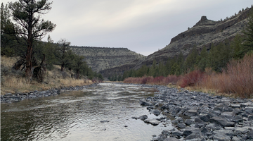 Crooked River Report 5/7/21