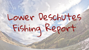 Lower Deschutes Update