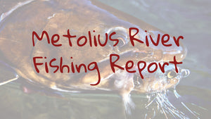 Metolius River Update