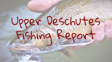 Upper Deschutes Update