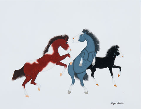 Two Horses Fighting and a Colt print
