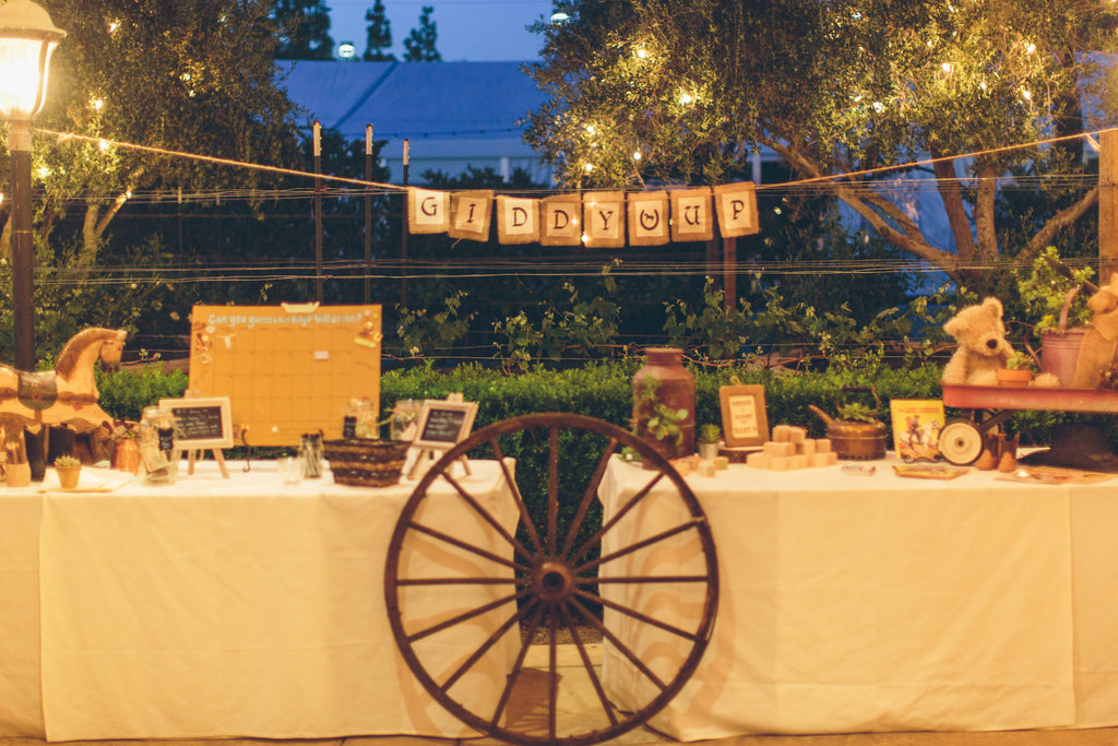 Giddy up LA! Are you looking for western cowboy themed party rentals for your kids next birthday party? Bashery & Co. offers a variety of kids western cowboy party rentals.