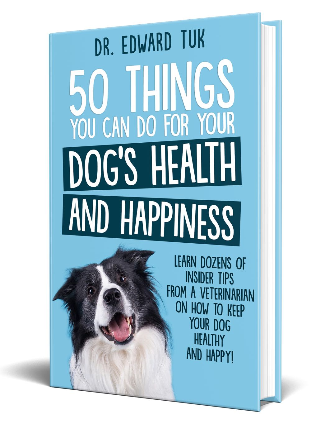 50 Things You Can Do For Your Dog's Health and Happiness