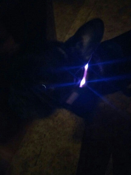 Premium Glow-In-The-Dark LED Safety Collar