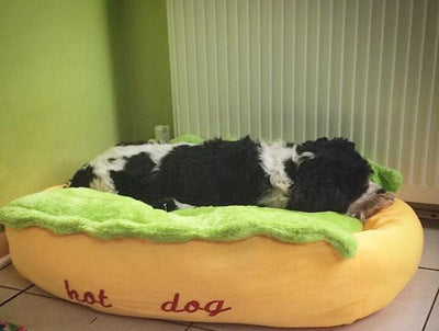 "Super Comfortable ""Hot Dog"" Bed"