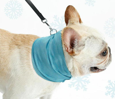 """Cooling Touch"" Dog Bandana"