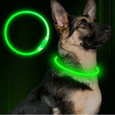 LED Nighttime Safety Light-up Collar