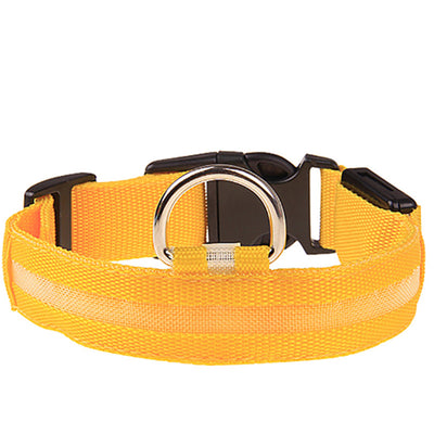 Quality Glow-In-The-Dark LED Safety Collar