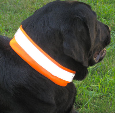 Ultra Visible Reflective Collar Cover