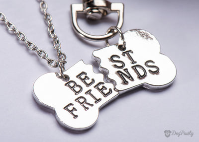 Best Friends Necklace & Collar Tag