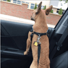 Doggie Car Seat Belt